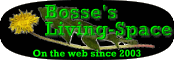 Bosse´s Living-Space Logo